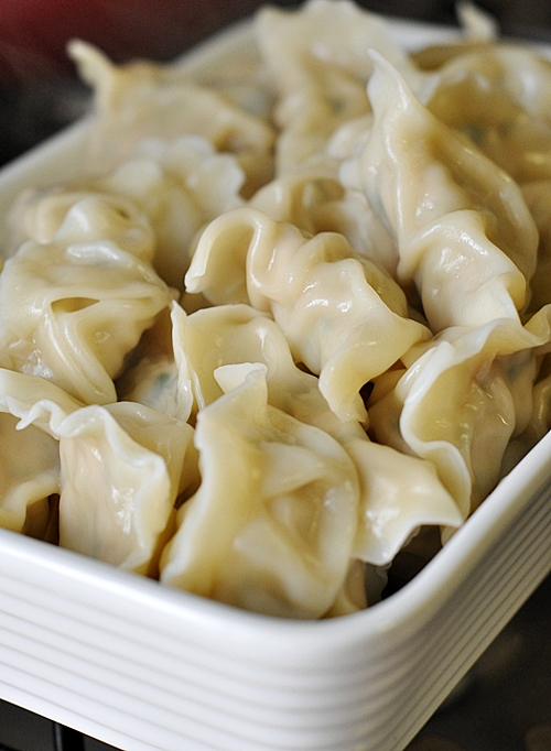 Chicken Dumplings (Jiaozi) - Fuss Free Cooking
