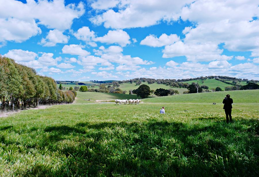 Rosedale, Blayney NSW