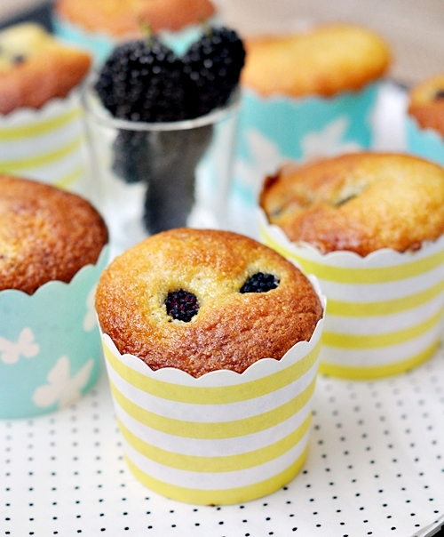 Sponsored Series 3: Mulberry Polenta Muffins & last chance of giveaway [CLOSED]