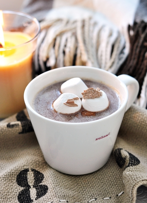 Cardamon Spiced Hot Chocolate